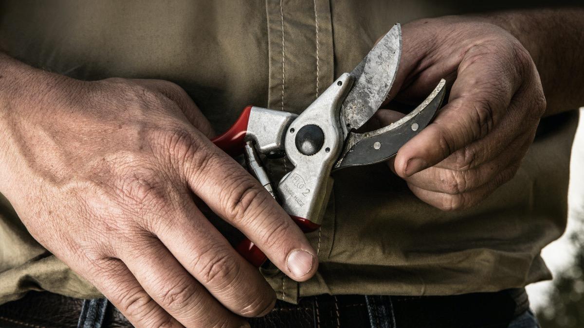 FELCO 2 One-hand pruning shear