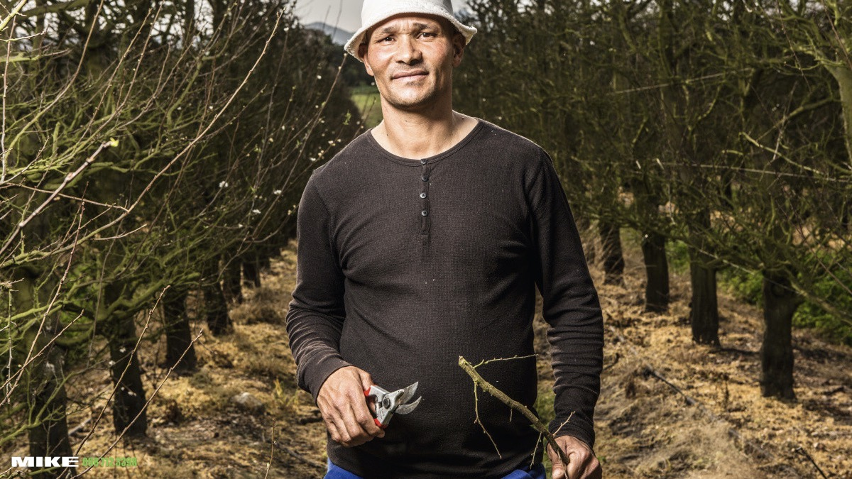 FELCO 4 One-hand pruning shear, Good performance, Standard model